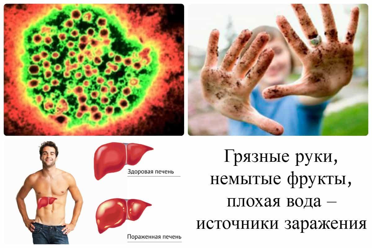 Лекарства жировой дистрофии печени
